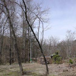 広葉樹、原村深山の里に移住!土地約510坪