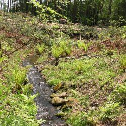 原村上里、間口約60m南側に小川流れる328坪土地に移住