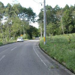 西側前面道路は6メートル程度広めの舗装道路