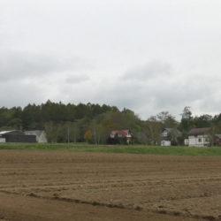茶色い建物の横の小高い土地