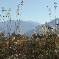 八ヶ岳田舎暮らし土地300坪超、上下水道付、南アルプス、山の眺望、西側に森、原村中心部約1.8キロで便利