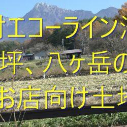 原村に別荘を買う、八ヶ岳エコーライン店舗兼住宅向け、八ヶ岳の眺望がある土地