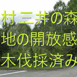 原村移住、樹木伐採済み、角地、西緩傾斜、三井の森土地