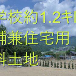 八ヶ岳別荘暮らし、小学校約1.2キロ、蓼科入口上下水道付き店舗兼住宅用土地