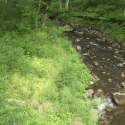 南側に小川が隣接しております