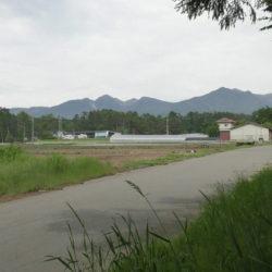 デュアルライフ物件、原村北里土地391坪、八ヶ岳眺望と小川、森の風景