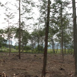 原村に別荘を買う、南側が畑で南アルプスの眺望良好689坪土地A区画