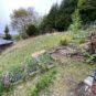 敷地のお庭で家庭菜園